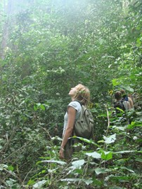 Jen on the look out for colobus