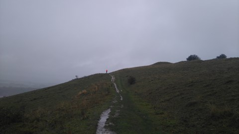 Hill training in the rain