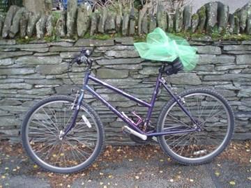 Ange's bike Betty with tutu!