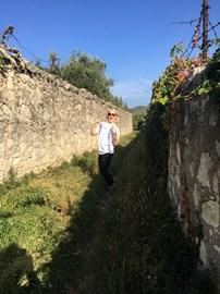 "Veneto, walking through a ""lasagne"" 25/10/18"
