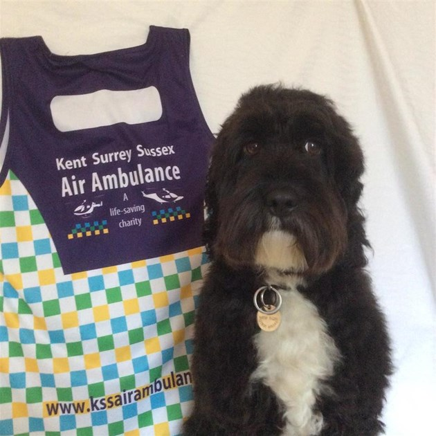 Fitted In Sussex Surrey And Kent: Robert Sheridan Is Fundraising For Kent, Surrey & Sussex