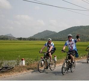 cycling across paddie fields