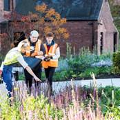 The Hepworth Wakefield Garden bulb planting, autumn 2019
