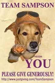 Team Sampson Recruitment Poster
