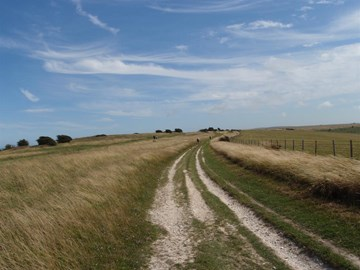 Endless Views of the South Downs Way