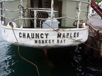 CHAUNCY MAPLES STERN OF SHIP