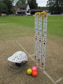 Bath CC are donning the Spots!!!