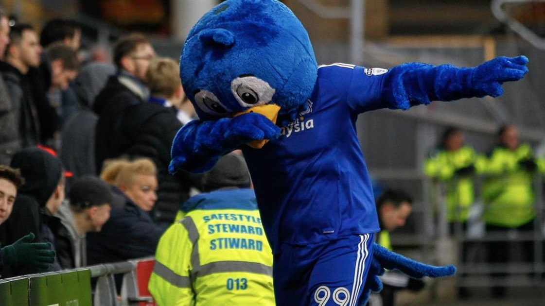 keith hughes bluebird is fundraising for cardiff city fc