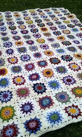 The Flowers in the Snow Blanket