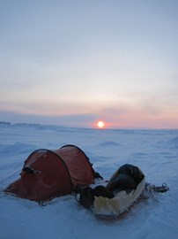 A sled and a tent is all you need ...