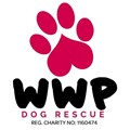 West Wales Poundies Dog Rescue