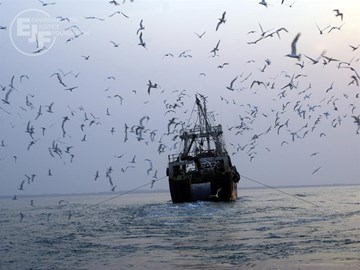 Fishing trawler operating illegally