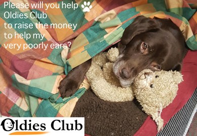 Please will you help?