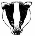 Badger Trust – Sussex