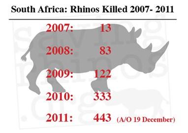 SA's Rhino death toll