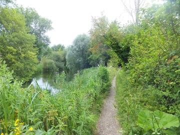 Training walk on Itchen Way July 16 2017