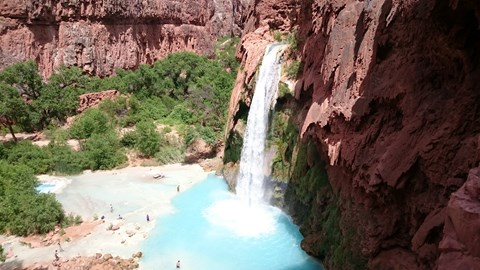 Havasu falls - one of the delights at the bottom of the Canyon