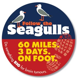 Follow the Seagulls - do something big for brain tumours