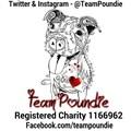 Team Poundie