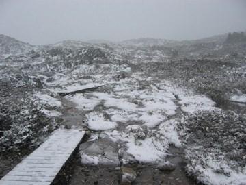 Snow in Australia???