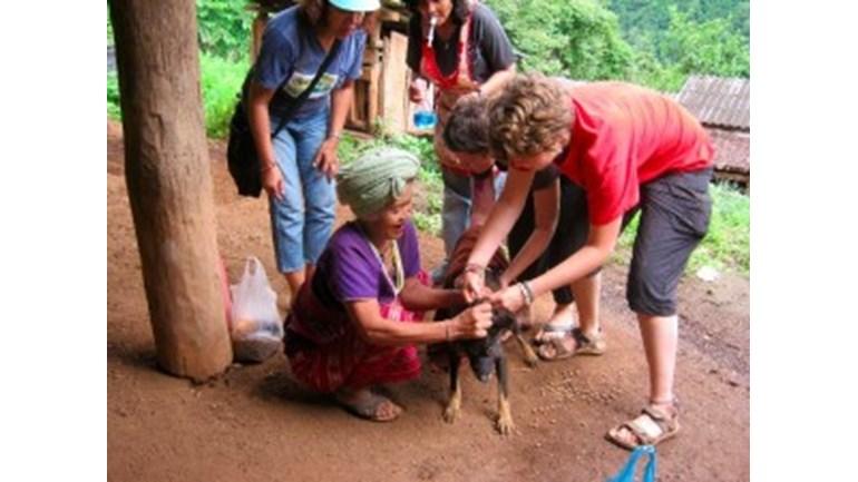 Jill Walker is fundraising for Global Vision International