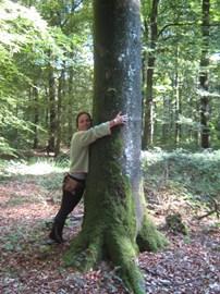 Tree hugging in France