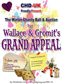 Winter Charity Ball & Auction Poster
