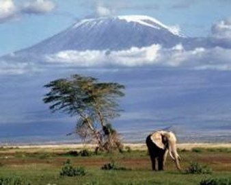 Mount Kilimanjaro - 19,340 feet high!