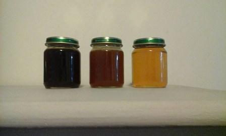 GRTZ Honey
