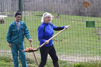 volunteering at the Romanian sanctuary