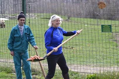 volunteering at the Romanian sanctuary