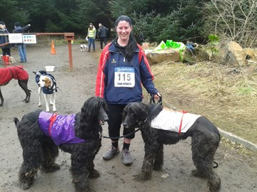 Tails and Merlin done the 7k.-CANI-SPORT