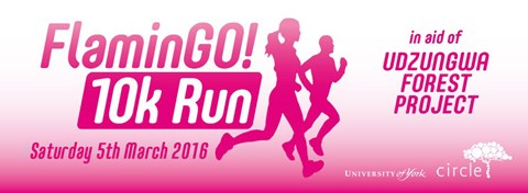FlaminGO! 10K run 2016