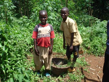 children collecting trees for their land