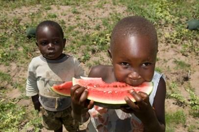Winnie and watermelon