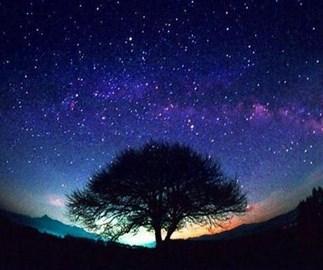 Night under the skies