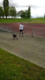 Poor old Maude drew the short straw and did 4 Laps on day three