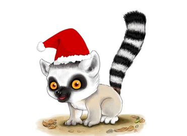 make a lemur happy this Christmas - plant a tree in Madagascar