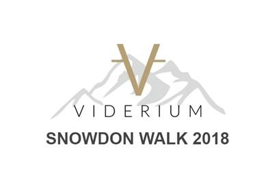 Viderium Team Snowdon Walk