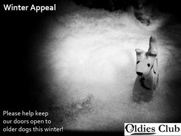 Winter Appeal - Oldies Club