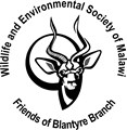 The Friends of Blantyre WESM