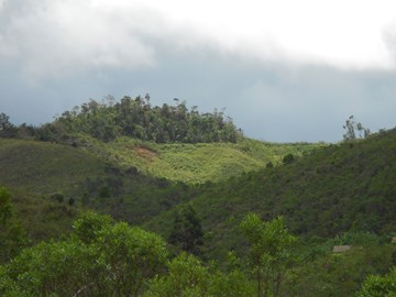 We are poised to plant trees to restore Madagascar's forests. For example here at Torotorofotsy.