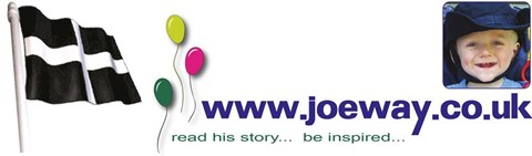 joe way appeal