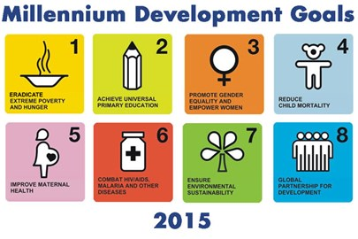 Working towards the UN MDGs