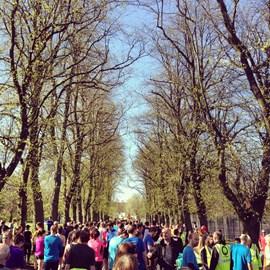 Park Run Training