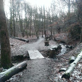 A frosty Fairy Glen early Saturday morning. That's why I do it!