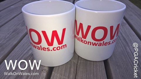 WOW - NO Mugs