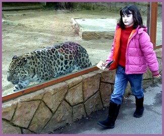 Lucia and Amur Leopard