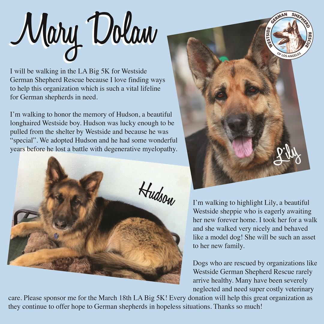 Mary Dolan Is Fundraising For Westside German Shepherd Rescue
