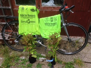 bike, trees (many thanks Coles Nurseries) and t-shirts ready